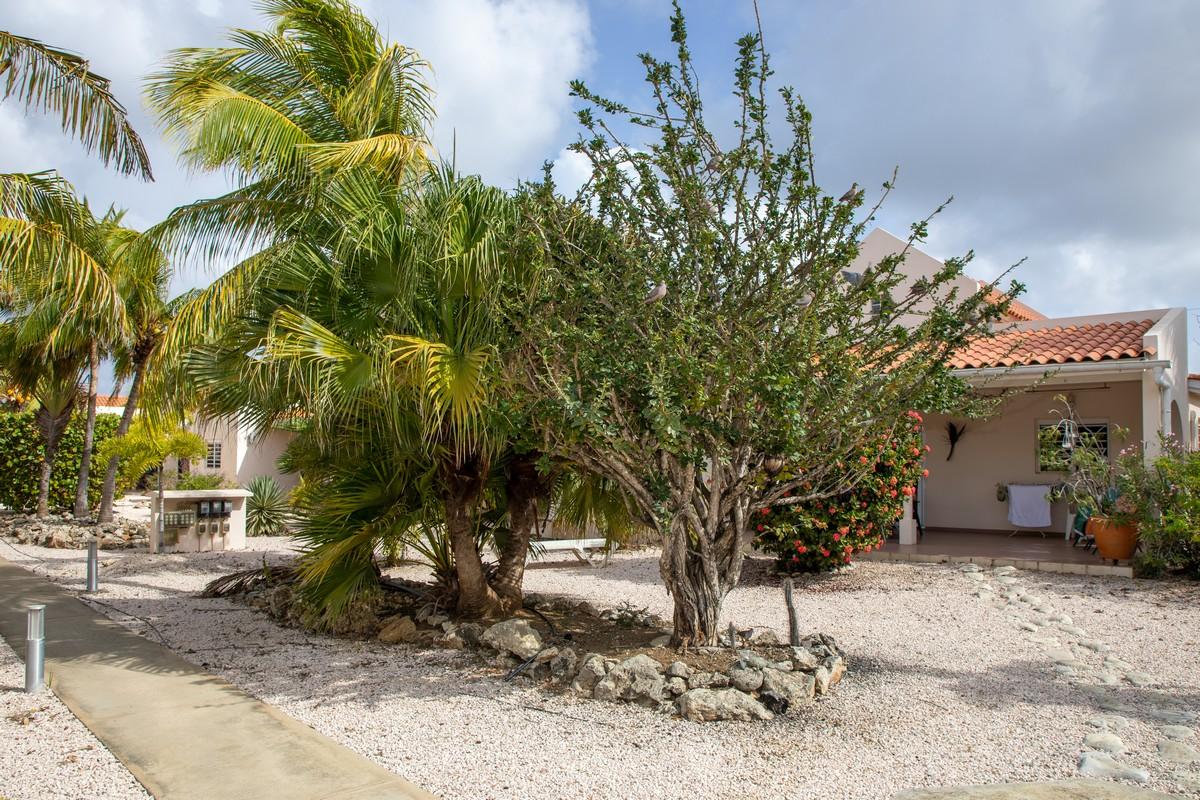 hamlet-oasis-resort-impression41