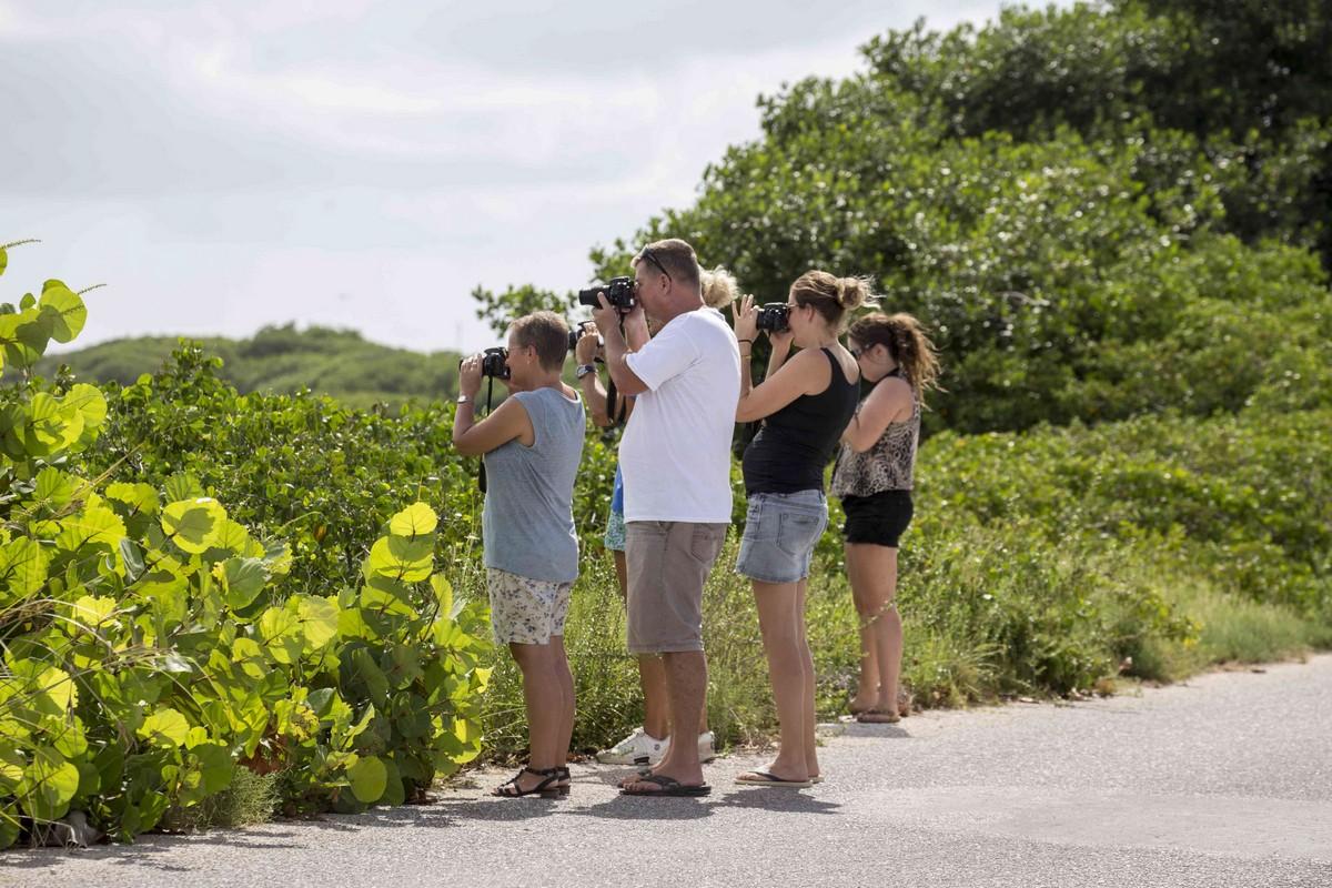 hamlet-oasis-resort-island-impression35